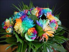 Favorable Plants Rainbow Chrysanthemum Flower Seeds Rare Color Home Garden Bonsai Plant - NewChic Mobile Rainbow Bouquet, Rainbow Flowers, Colorful Flowers, Rainbow Colors, Flower Colors, Flower Diy, Summer Flowers, Happy Flowers, Rare Flowers