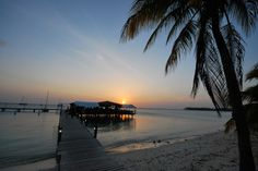 5 Awesome Restaurants in Aruba