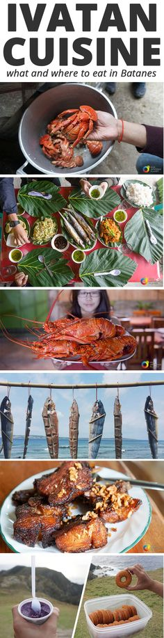 Where to eat in Batanes - Batanes Food Guide. Travel to the Philippines with Our. Where to eat in Batanes - Batanes Food Guide. Travel to the Philip. Bohol, Batanes, Philippines Travel Guide, Philippines Food, Puerto Princesa, Borneo, Asian Street Food, Filipino Recipes, Foodie Travel