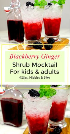 Sweet and sour, my Blackberry Ginger Shrub recipe is an amazing summer drink for both a non-alcoholic kid drink or a refreshing summer cocktail for adults. Cocktail Vodka, Cocktail Recipes, Kid Drinks, Non Alcoholic Drinks, Beverages, Refreshing Summer Cocktails, Summer Drinks, Best Shrub Recipe, Cocktails