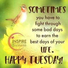 Tuesday Morning Quotes Good Morning Have A Terrific Tuesday Good Morning Tuesday Tuesday
