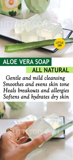 DIY ALL NATURAL ALOE SOAP Aloe vera is such an amazing multipurpose beauty ingredient and is dominantly found in so many commercial products as well! Aloe now-a-days is also found in makeup and is great for sensitive skin. Looking out READ MORE. Beauty Care, Diy Beauty, Beauty Hacks, Beauty Skin, Homemade Beauty, Beauty Secrets, Beauty Ideas, Beauty Guide, Face Beauty