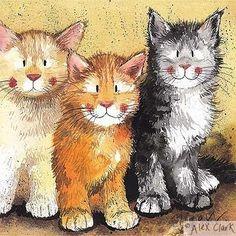 Kiut Cats
