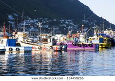 Image result for kalk bay harbour boats