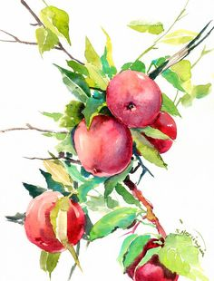 Red Apple Tree Painting, original watercolor 12 x 9 in, red green wall art, apples