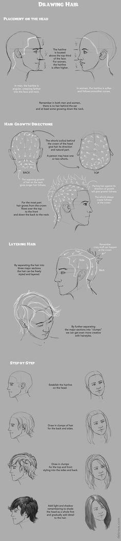 Drawing Hair Tutorial by banjodi on DeviantArt