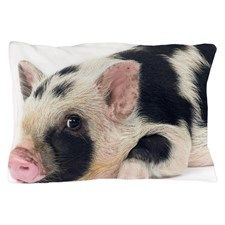 Micro pig chilling out Pillow Case for