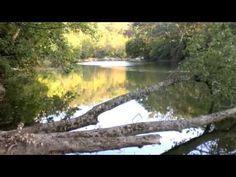 River Ecology | Wild River Ecology | 10 min