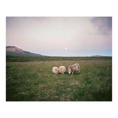 """Michael Novotny, """"Icelandic midnight"""", Snæfellsjökull National Park."""