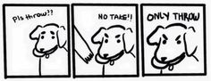 bleutempete:  Dog logic