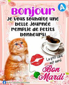 Bon Mardi, Facebook, Good Night, Wish, Wild Animals, Cat Breeds