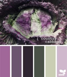 another couple of options for my greenish house and purple door...