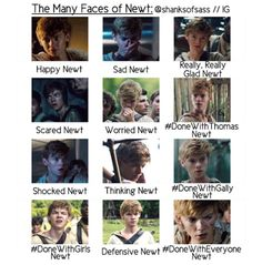 The Many Faces of Newt