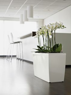 Need to inject the feel good factor into your workplace? Optimising your space can be as simple as introducing new interior greenery. Our range of pots and plants is vast and whatever your space, we can create a scheme that is as unique as you are. www.vantagespaces.co.uk