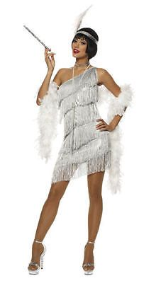 Roaring Adult Womens Silver Dazzling Flapper Gatsby Costume Dress for sale online Roaring 20s Outfits, Roaring 20s Fashion, Roaring Twenties, Flapper Girls, Flapper Outfit, Style Charleston, Costume Gatsby, 1920s Flapper Costume, Adult Costumes