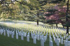 2. Arlington National Cemetery
