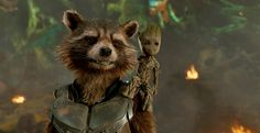 Rocket and Baby Groot in Guardians of the Galaxy Volume 2 #groot #guardiansofthegalaxy #babygroot https://1923mainstreet.com