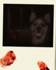 Smile Dog http://creepypasta.wikia.com/wiki/Smile_Dog Smile.dog's story consists of a classic horror set-up – an amateur writer visits the house of a lady who supposedly has a story for which he can borrow from. Rather than speak, however, the lady has locked herself up in her room, crying and ranting about nightmares and visions and various other problems. All of these center around a floppy disk she had been given that contain the image smile.jpg – which is smile.dog.