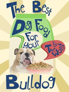 The Best Dog Food Brands For Your Bulldog + The Worst