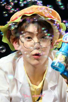 K Pop, Rapper, Magic Island, Cat Dog, Memes, Boy Groups, Artist, Cute, Giant Bunny