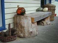 Tree trunk slab bench I