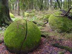 Mystical Ohingaiti boulders on New Zealand's northern island were formed under the sea