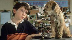 BONDE DA BARDOT: Rede Record exibe o filme 'Um cão do outro mundo', nesta sábado (07/05)