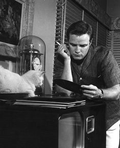 And look at him in another pic with a cat. | Marlon Brando Was A Perfect Man