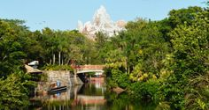 Do You Know These Six Secrets About Disney's Animal Kingdom? – DisneyDining