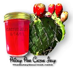 CACTUS JELLY | The Gutsy Gourmet - http://www.thegutsygourmet.net/cactus-jelly.html