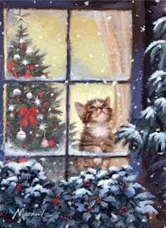 Christmas Kitten at the Window. Christmas Kitten, Old Christmas, Christmas Scenes, Christmas Animals, Vintage Christmas Cards, Christmas Pictures, Beautiful Christmas, Christmas Wishes, Xmas Cards