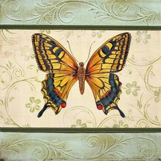 Lovely Butterfly-1 Painting  - Lovely Butterfly-1 Fine Art Print