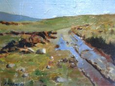 "Bog land in gweedore.8""x10"".0il on board."