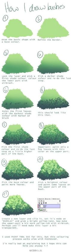 how to draw bushes