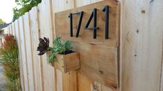 Look what I did yesterday! Made with fence boards and a few succulent clippings from around my garden.