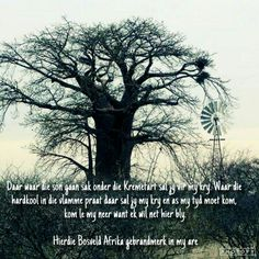 Bosveld Afrika- Bok v. Quotes And Notes, Windmills, South Africa, Poems, Brother, Van, Inspirational Quotes, Country, Board