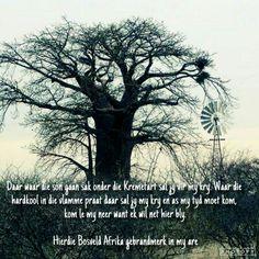 Bosveld Afrika- Bok v.Blerk