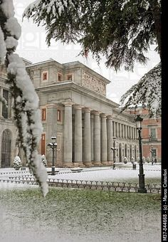 To see the world's great art treasures...Prado Museum, Madrid, Spain
