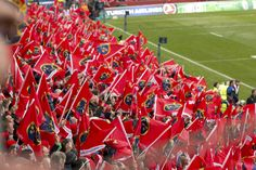 Munster Rugby, Flags, Flag