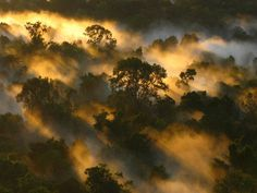 Cientistas descobrem método promissor para armazenar CO2