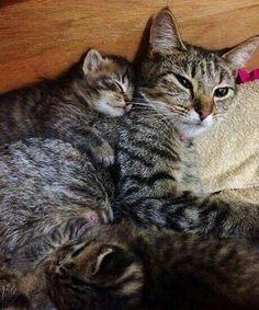 Sleeping with Mom...