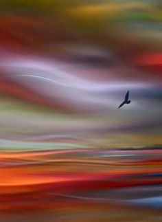 Sunset flight beautiful sunset, simply beautiful, beautiful world, beautiful places, amazing photography Abstract Landscape, Abstract Art, Nature Pictures, Painting Techniques, Beautiful Landscapes, Painting Inspiration, Watercolor Paintings, Nature Photography, Amazing Photography