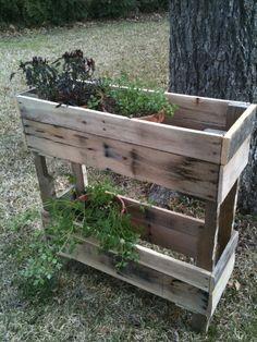Herb Garden, or Bathroom Caddy