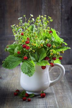 bouquet of wild strawberry by Natalia Klenova on 500px