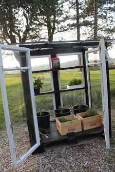 More DeliSious: En tur på genbrugspladsen blev til et drivhus Small Gardens, Outdoor Gardens, Garden Beds, Home And Garden, Hydroponic Plants, Greenhouse Plans, Backyard, Patio, Barbacoa