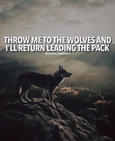 Positive Quotes : QUOTATION – Image : Quotes Of the day – Description Throw me to the wolves and Ill return leading the pack. Sharing is Power – Don't forget to share this quote ! https://hallofquotes.com/2018/03/31/positive-quotes-throw-me-to-the-wolves-and-ill-return-leading-the-pack/