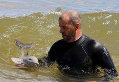 A marine mammal veterinarian teaches a baby dolphin how to go swim near the water surface & breathe <3