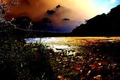 ©UGNeumann Bmb2012-068b