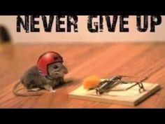 Great video for students teaching about grit, why it is important and what it is.