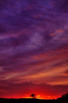 ✮ Fabulous Purple Sunset